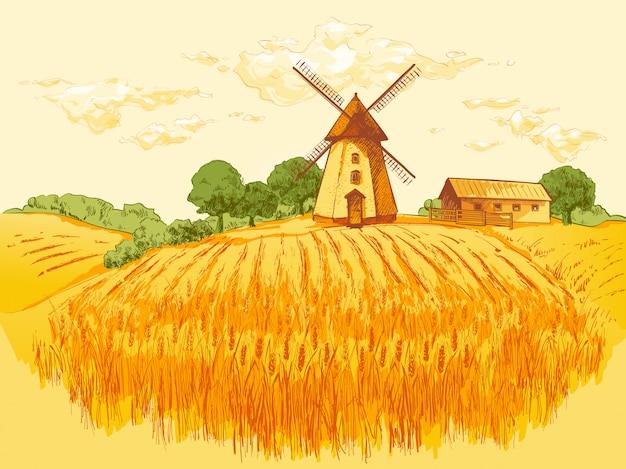 Illustrazione rurale del grano del campo del paesaggio