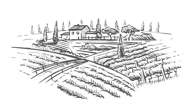 Paesaggio rurale con villa, vigneto e colline.