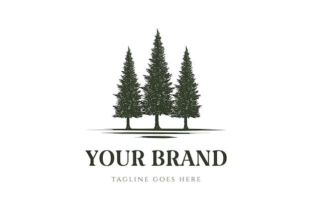 Rustico pino cedro sempreverde cipresso larice conifera conifere abeti foresta logo design vector