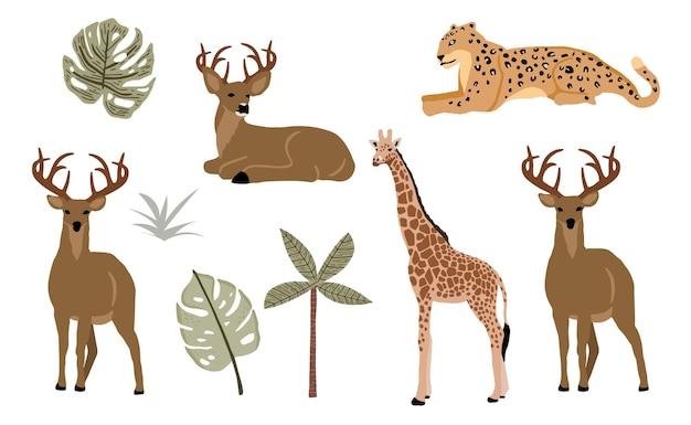 Collezione di oggetti animali safari con leopardo, tigre, zebra, giraffa. illustrazione per icona, adesivo, stampabile