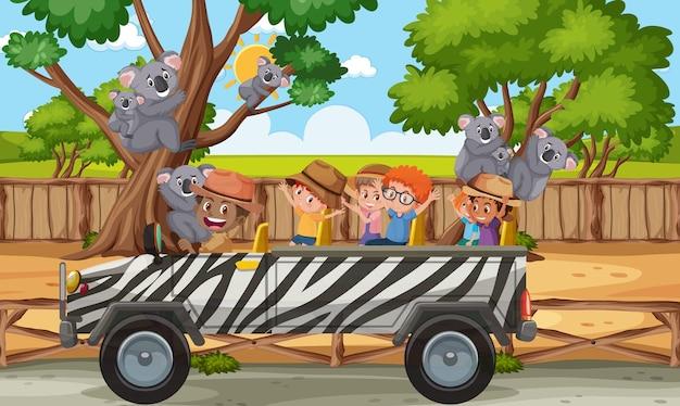 Scena di safari con bambini in macchina turistica che guardano un gruppo di koala