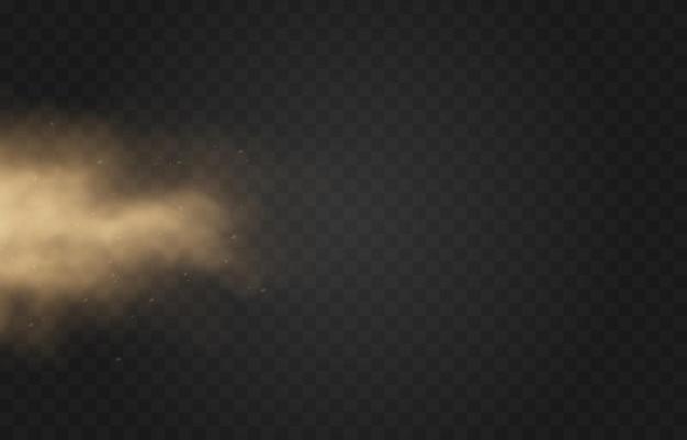 Nuvola di polvere sabbiosa su sfondo trasparente