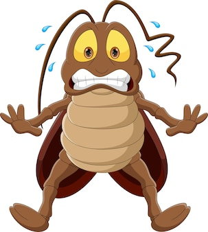 Cartone animato scarafaggio spaventato isolato su sfondo bianco