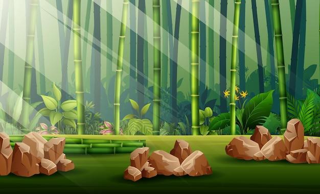 Scena con illustrazione di foresta di bambù