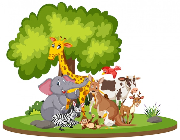Scena con simpatici animali nel parco