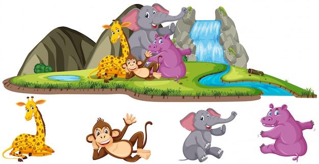Scena con quattro tipi di animali vicino alla cascata