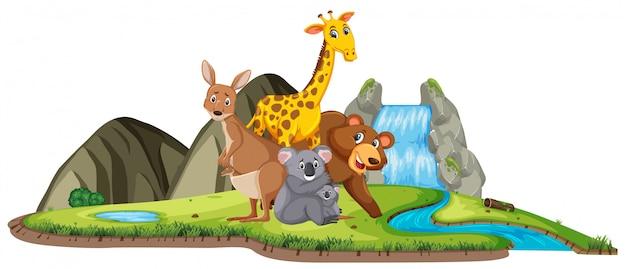 Scena con molti animali vicino alla cascata durante il giorno