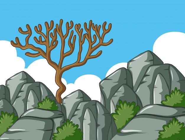 Scena con alberi e rocce