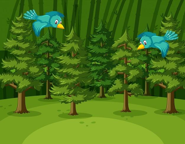 Scena con due uccelli che volano nella foresta