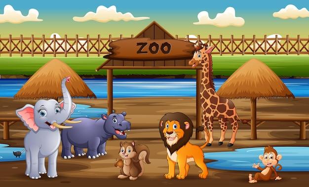 Scena con animali selvatici all'illustrazione del parco zoo
