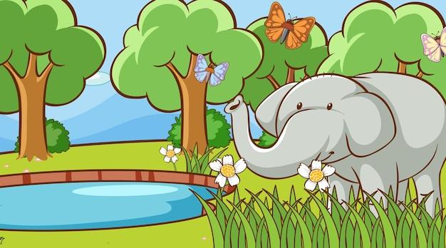 Scena con elefante selvaggio nella foresta