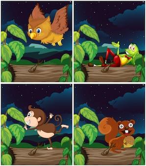 Scene con animali durante la notte
