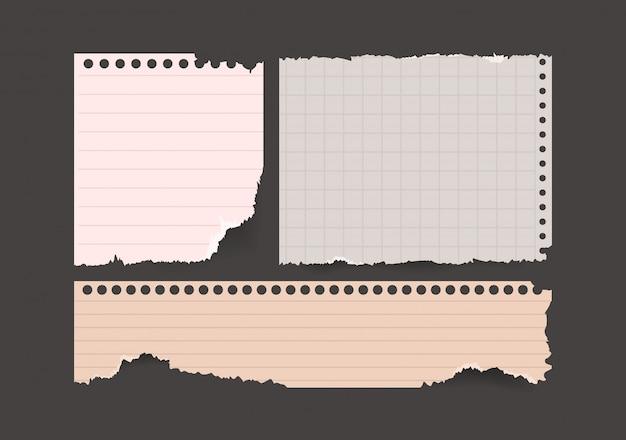 Set di pezzi di carta strappata per appunti