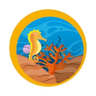 Icona di cavallo di mare. progettazione di vita marina. grafica vettoriale