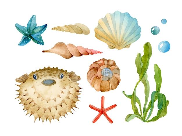 Insieme di elementi isolati dell'acquerello di vita di mare