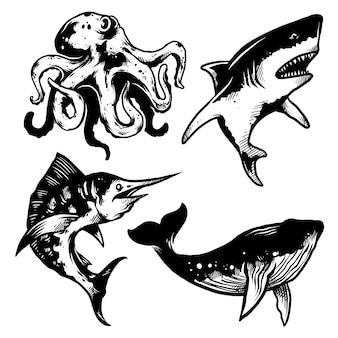 Pacchetto mostro marino, illustrazione disegnata a mano