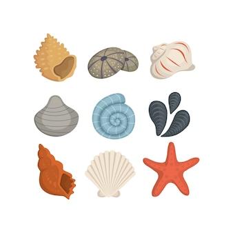 Icone di conchiglia di mare in stile cartone animato. set di molluschi vongole. cockleshell dell'oceano.