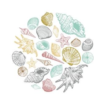 Modello rotondo conchiglia di mare. conchiglie colorate disegnate a mano dal cerchio. illustrazione per la progettazione