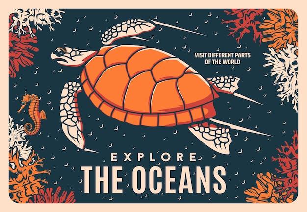 Poster vettoriale retrò tartaruga marina, oceanarium o barriera corallina oceanica e vita sottomarina. tour del mondo marino o della vita marina sottomarina ed escursioni subacquee, avventura marina con cavallucci marini e tartarughe