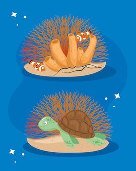 Vita sottomarina del mare, tartaruga con animali pesci pagliaccio