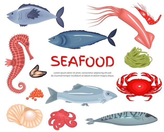 Set di sfondo grande raccolta di frutti di mare