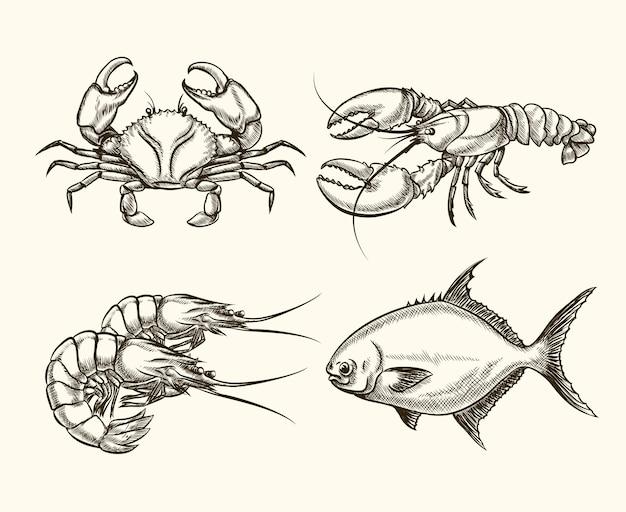 Frutti di mare impostati in stile disegnato a mano