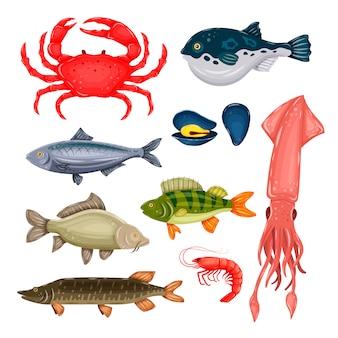 Insieme dei frutti di mare con il granchio, il pesce, la cozza e il gamberetto isolati su fondo bianco. creature marine in stile piatto.