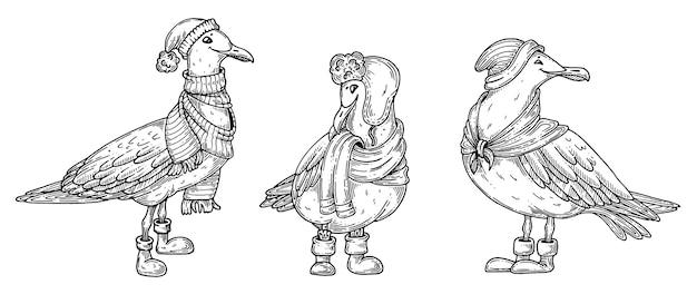 Uccelli di gabbiano con sciarpa e cappelli invernali