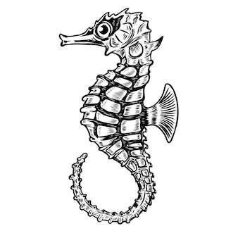 Illustrazione di cavalluccio marino su sfondo bianco. elemento per poster, t-shirt. illustrazione