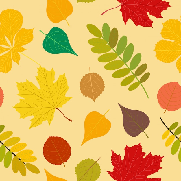 Reticolo senza giunte di autunno, foglie dell'albero ed erbe.
