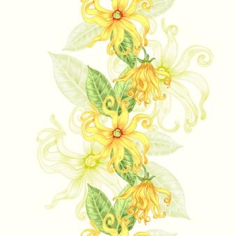 Sfondo trasparente con fiori esotici.