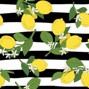 Senza soluzione di continuità di rami con limoni Vettore Premium