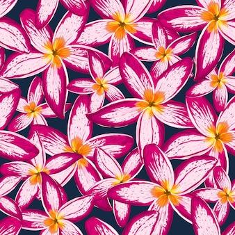 Fondo senza cuciture dei fiori del frangipani del modello floreale.