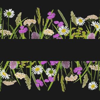 Bordo dell'orizzonte senza soluzione di continuità con fiori di campo di erbe per stampe tessili di campagna di banner web