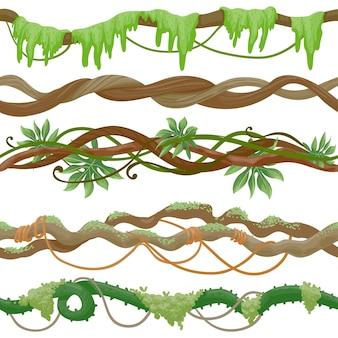 Vite senza giunte della giungla sul ramo. albero tropicale selvaggio con liana, foglie e muschio. stelo di pianta rampicante verde. reticolo di vettore della foresta pluviale dei cartoni animati