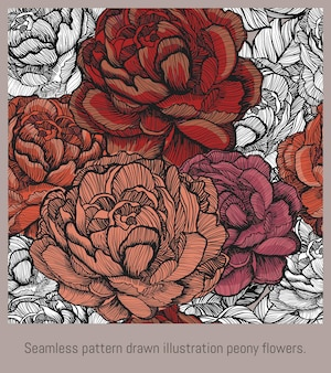 Arte disegnata a mano dell'illustrazione senza cuciture del modello dei fiori di fioritura della peonia.