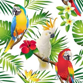 Modello senza cuciture dei cacatua dei pappagalli sui rami tropicali con le foglie ed i fiori su d