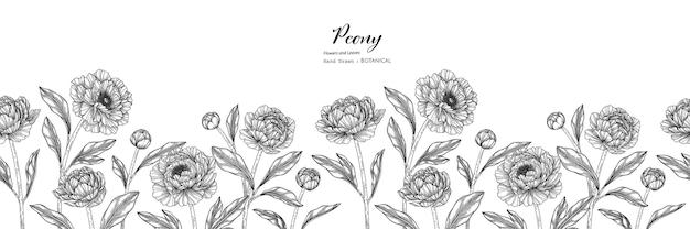 Modello senza cuciture illustrazione botanica disegnata a mano di fiori e foglie di peonia con line art.