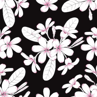 Fondo d'annata del modello senza cuciture con i fiori floreali disegnati a mano del frangipani