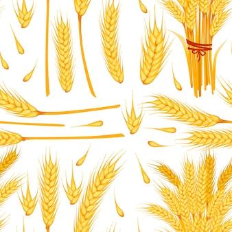 Modello senza cuciture di spighette mature gialle di grano e chicchi di illustrazione vettoriale piatto di grano su sfondo bianco.