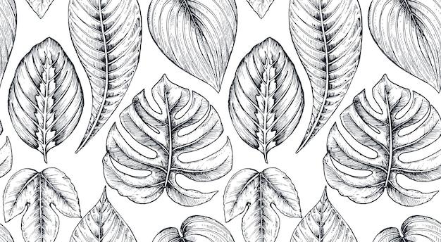 Modello senza cuciture con composizioni di fiori tropicali disegnati a mano, foglie di palma, piante della giungla