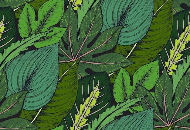 Seamless con composizioni di foglie di palma tropicali disegnate a mano, piante della giungla.