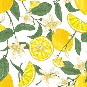 Modello senza cuciture con limoni freschi e succosi, interi e tagliati a pezzi, fiori e foglie