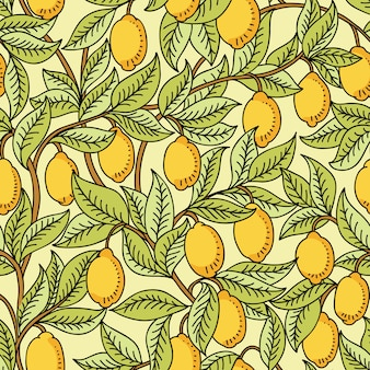 Modello senza soluzione di continuità con i limoni
