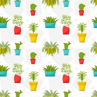 Modello senza cuciture con piante d'appartamento in vaso. fiori domestici, ficus, cactus, asclepiade, aloe, felce.