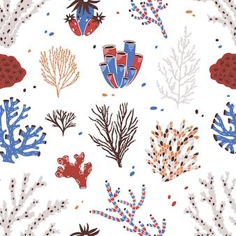 Modello senza cuciture con vari coralli e alghe o alghe su bianco.