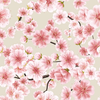 Senza soluzione di continuità di rosa sakura.