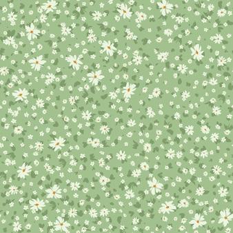 Motivo floreale primaverile senza cuciture con margherite per il vestito