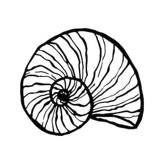 Conchiglia, vettore subacqueo della natura dell'oceano. stampa marina disegnata a mano su sfondo bianco