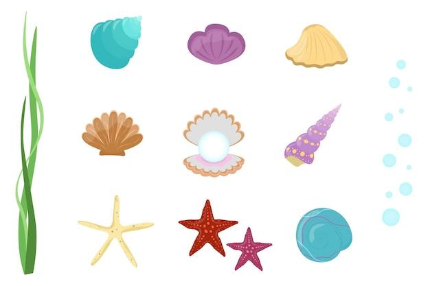 Set di conchiglie e stelle marine. accumulazione di vettore degli elementi subacquei su fondo bianco.